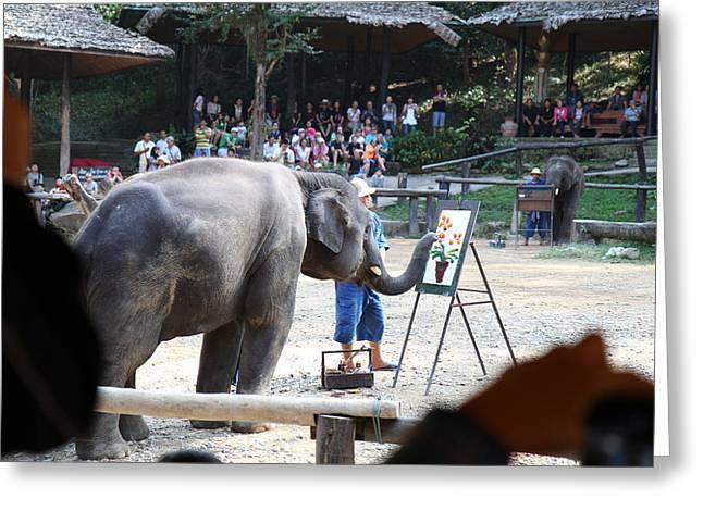 Mai Greeting Cards - Elephant Show - Maesa Elephant Camp - Chiang Mai Thailand - 011347 Greeting Card by DC Photographer
