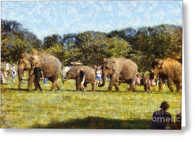 Elephant Photographs Greeting Cards - Elephant train  Greeting Card by Pixel  Chimp