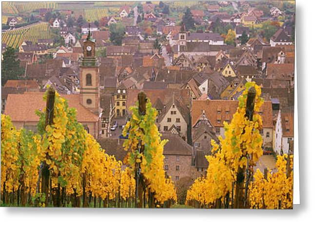 Elevated View Of The Riquewihr Greeting Card by Panoramic Images