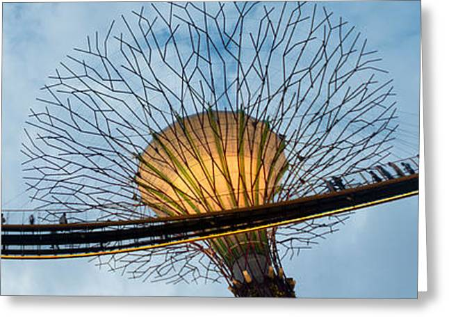 The Tiger Greeting Cards - Elevated Walkway Among Supertrees Greeting Card by Panoramic Images