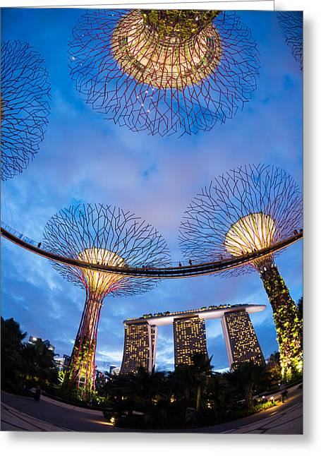 The Tiger Greeting Cards - Elevated Walkway At Gardens By The Bay Greeting Card by Panoramic Images