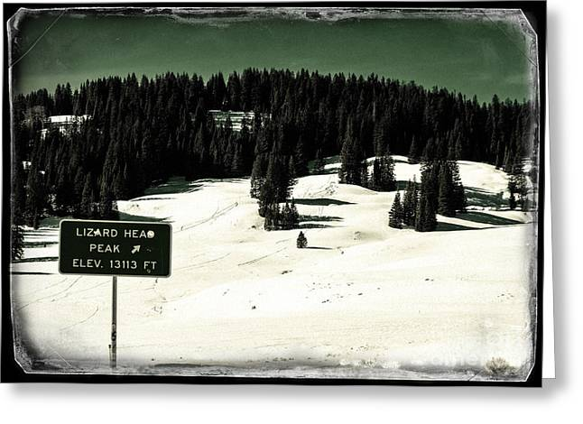 Snow Capped Greeting Cards - Elevation 13113 Greeting Card by Janice Rae Pariza