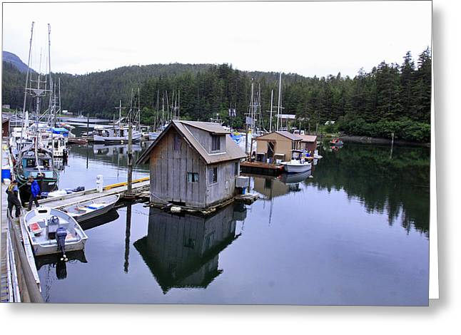 Fishing Pyrography Greeting Cards - Elfin Cove Alaska Greeting Card by Shoal Hollingsworth