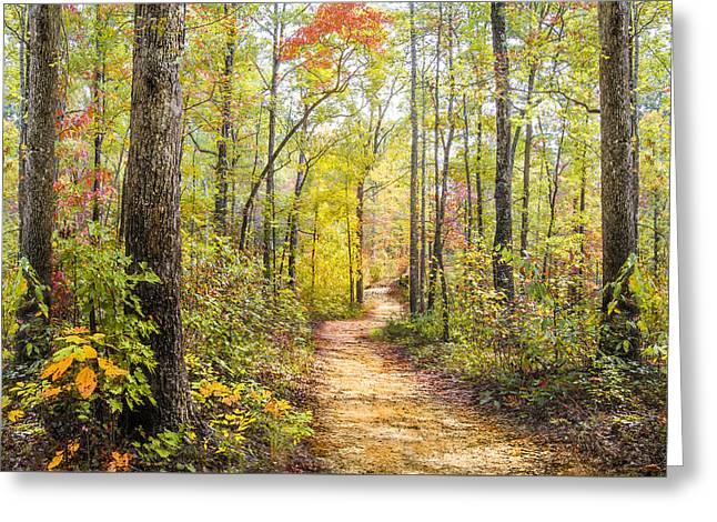 Elfin Forest Greeting Card by Debra and Dave Vanderlaan