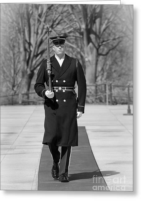 Photo . Portrait Greeting Cards - Elite Guard Greeting Card by Inge Johnsson