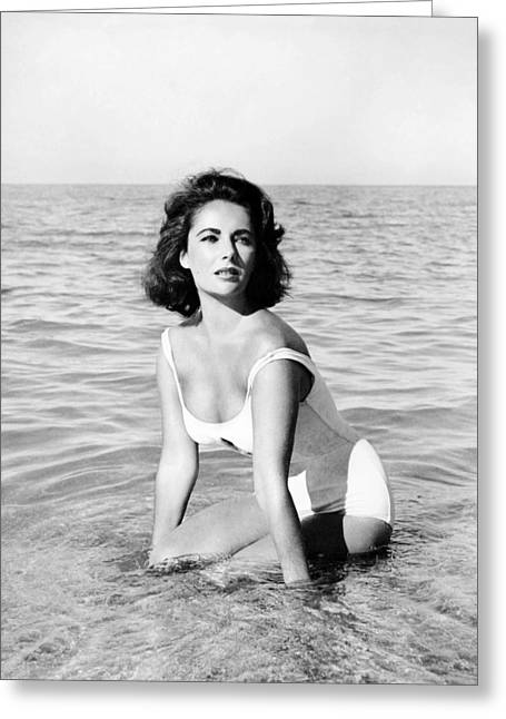 1950 Movies Greeting Cards - Elizabeth Taylor in Suddenly, Last Summer  Greeting Card by Silver Screen