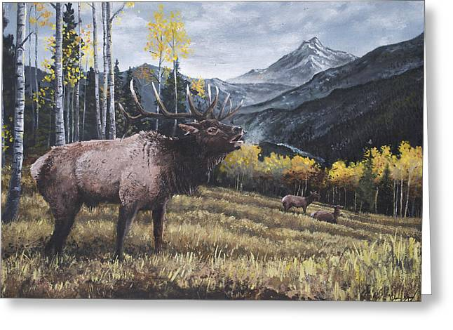 Quality Greeting Cards - Elk Bugle Greeting Card by Aaron Spong