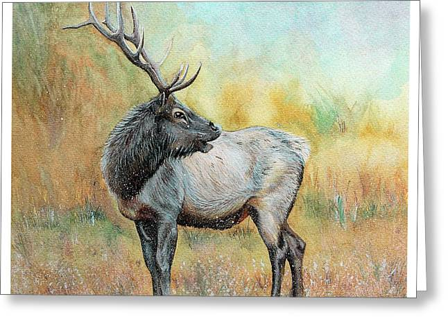 Winter Photos Paintings Greeting Cards - Elk In Winter Painting Greeting Card by Janet Pancho Gupta