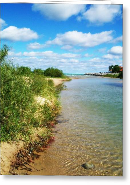 Elk Rapids Greeting Cards - Elk River with Fluffy Clouds Greeting Card by Michelle Calkins