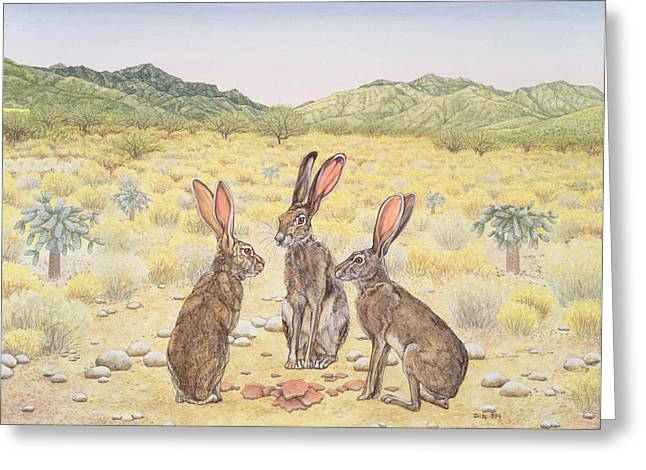 Hare Photographs Greeting Cards - Elkhorn Conference, 1994 Greeting Card by Ditz