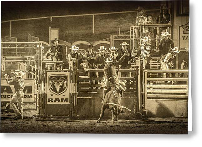 Bull Riding Greeting Cards - Elks Rodeo - 2014 Greeting Card by Caitlyn  Grasso