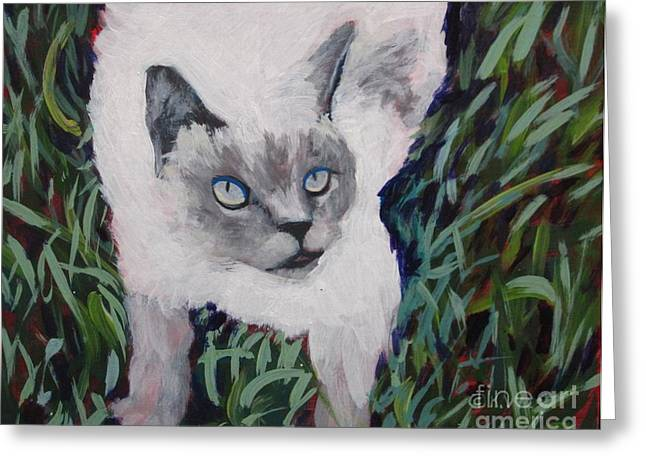 Siamese Cat Greeting Card Greeting Cards - Ellie Caught Greeting Card by Katrina West
