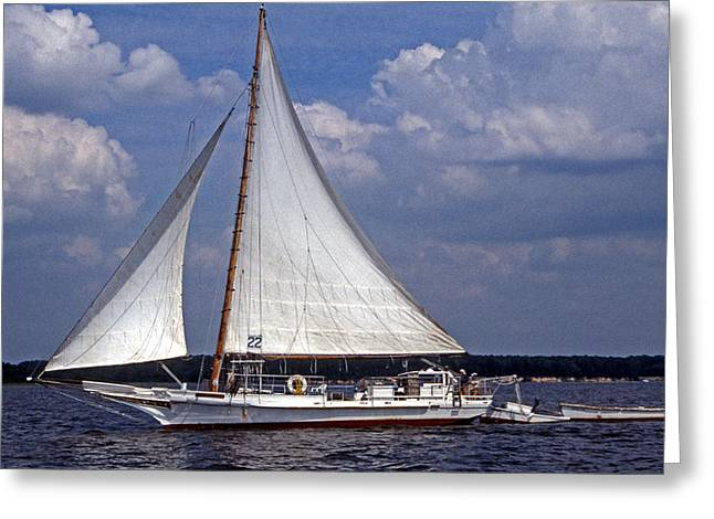 Sailboat Photos Greeting Cards - Ellsworth Greeting Card by Skip Willits