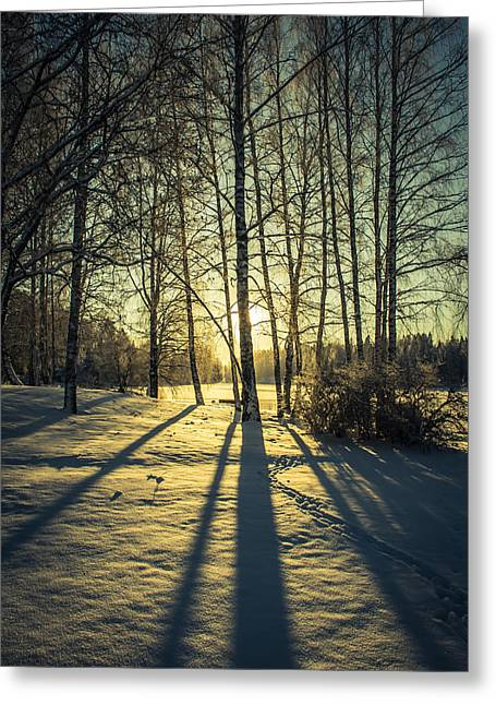 Elongated Shadows Greeting Cards - Elongated Greeting Card by Matti Ollikainen
