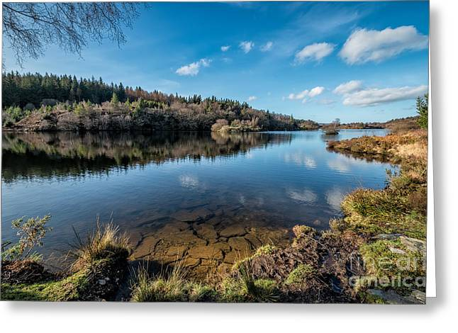 Moss Digital Art Greeting Cards - Elsi Reservoir Greeting Card by Adrian Evans