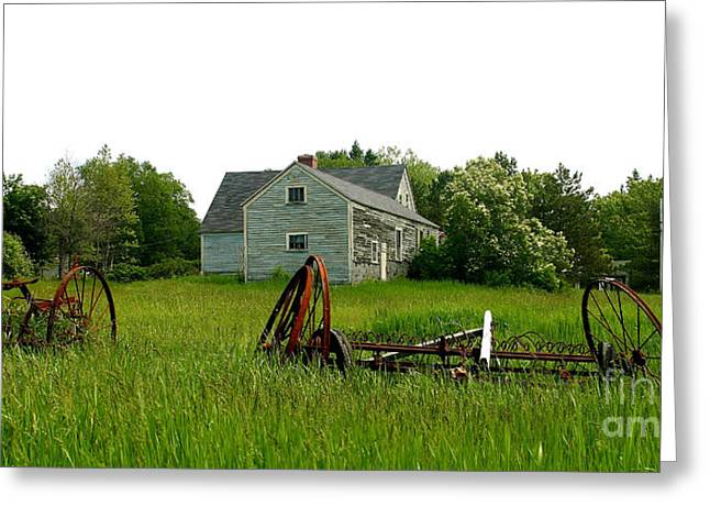 Maine Agriculture Greeting Cards - Elsies Place Greeting Card by Laura Mace Rand