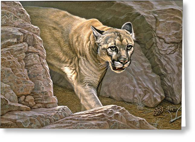 Canyon Country Greeting Cards - Elusive Hunter - Cougar Greeting Card by Paul Krapf