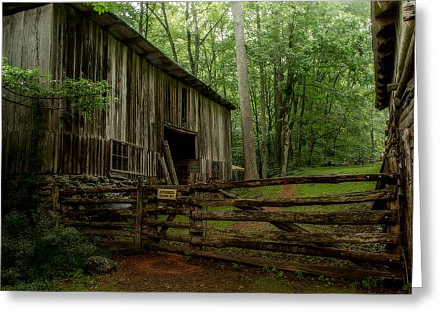 Roaring Fork Road Photographs Greeting Cards - Elys Mill Greeting Card by Susan Harris