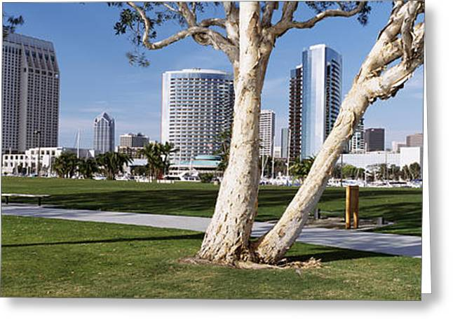 Man Made Space Greeting Cards - Embarcadero Marina Park, San Diego Greeting Card by Panoramic Images