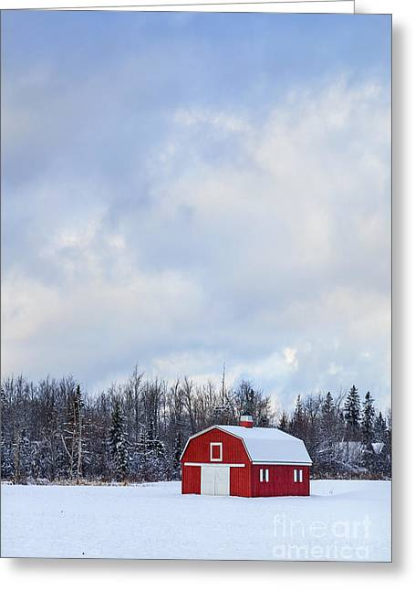New England Village Photographs Greeting Cards - Embrace The Cold Greeting Card by Evelina Kremsdorf