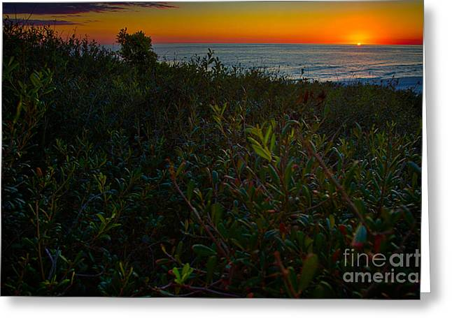 Emerald Coast Greeting Cards - Emerald Coast Sunset Greeting Card by Doug Sturgess