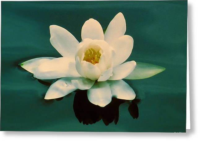 Emerald  Greeting Card by Debra     Vatalaro