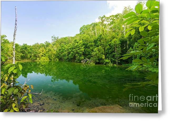Unseen Greeting Cards - Emerald Pool Greeting Card by Atiketta Sangasaeng