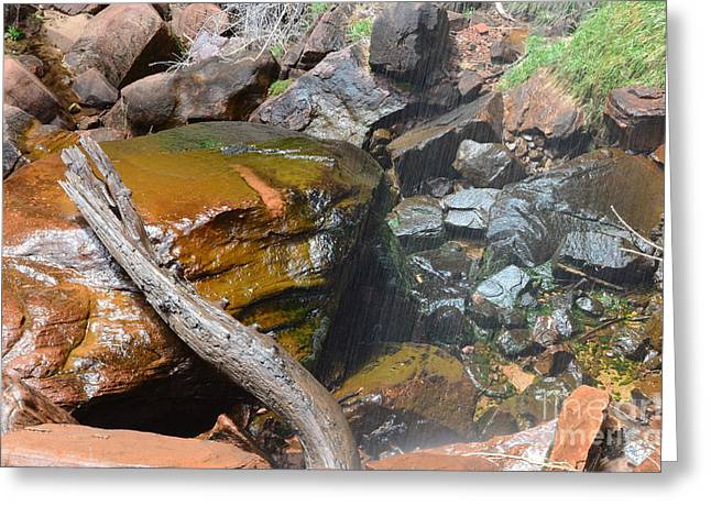 Emerald Pools Close Up Greeting Card by Rincon Road Photography By Ben Petersen