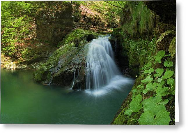 Emerald Green Greeting Cards - Emerald waterfall Greeting Card by Davorin Mance