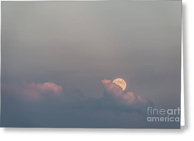 Moonrise Greeting Cards - Emergence Greeting Card by Sandra Bronstein