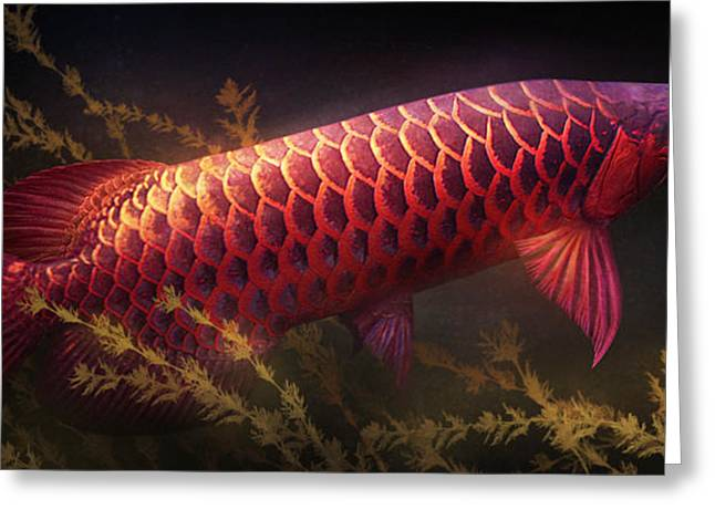Aquatic Greeting Cards - Emerging Red Greeting Card by Javier Lazo