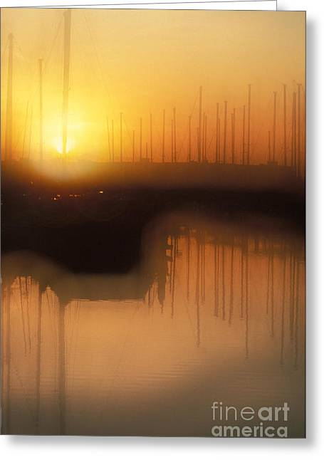 Docked Boats Greeting Cards - Emeryville Marina, Ca Greeting Card by Ron Sanford