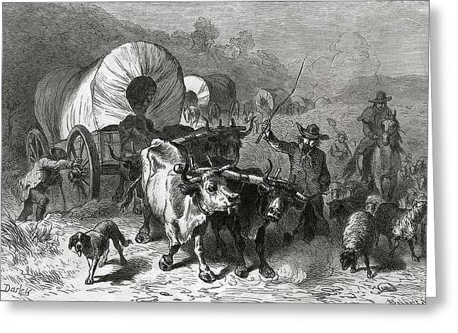 Cattle Dog Greeting Cards - Emigration To The Western Country, Engraved By Bobbett Engraving Bw Photo Greeting Card by Felix Octavius Carr Darley