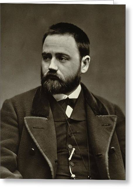 Lapel Greeting Cards - Emile Zola Greeting Card by Etienne Carjat