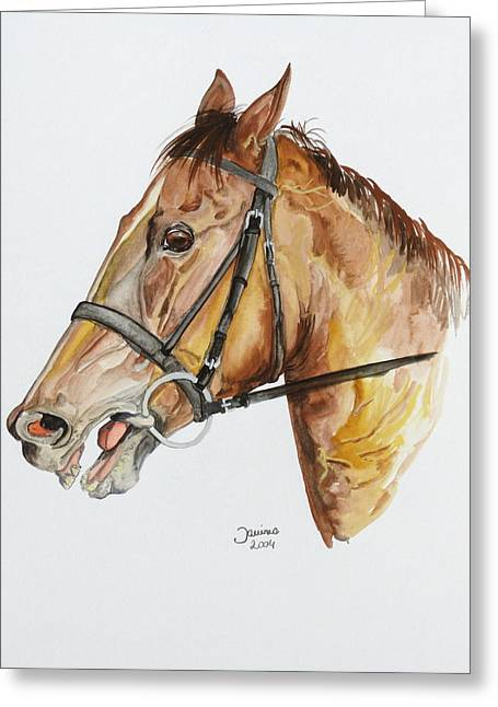 Arabian Horse Original Greeting Cards - Emir the horse Greeting Card by Janina  Suuronen