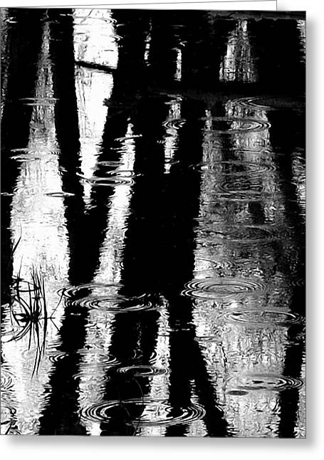 Abstract Rain Greeting Cards - Emotional Crossing - Natures Tear Drops Greeting Card by Steven Milner
