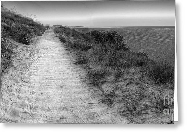 Scenic Drive Greeting Cards - Empire Bluff Trail Greeting Card by Twenty Two North Photography
