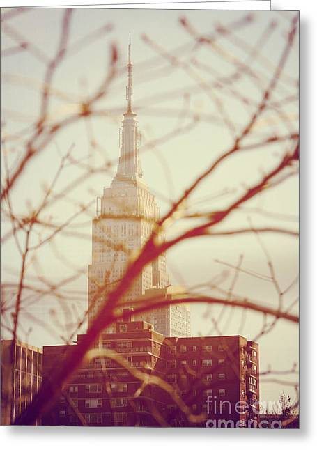 Nyc Pyrography Greeting Cards - Empire State Building NYC Greeting Card by Fernando Tobar