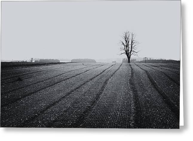 Pasture With Snow Greeting Cards - Emptiness Greeting Card by Mustafa Otyakmaz