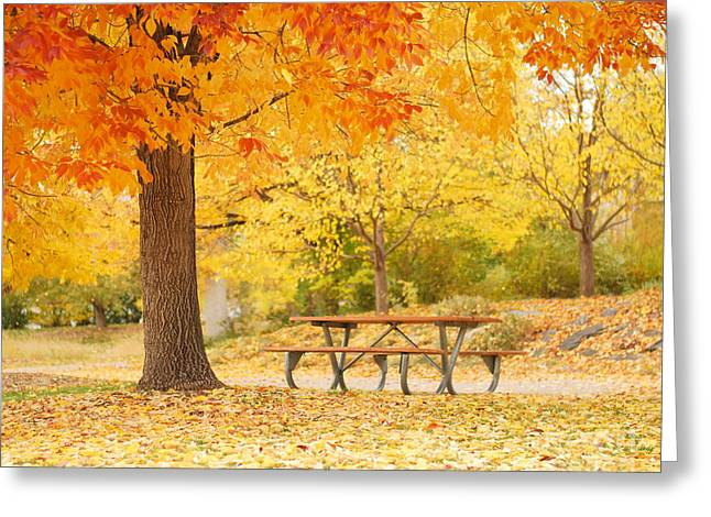 Fall Grass Pyrography Greeting Cards - Empty park on a fall day Greeting Card by Yoshiko Wootten