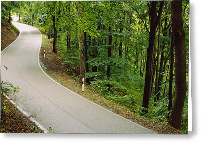 Winding Road Greeting Cards - Empty Road Running Through A Forest Greeting Card by Panoramic Images