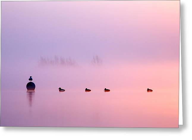 Empty Spaces 2 - Sunrise In The Mist Greeting Card by Roeselien Raimond