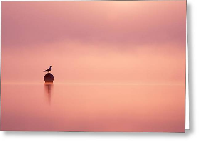 Empty Spaces Greeting Card by Roeselien Raimond