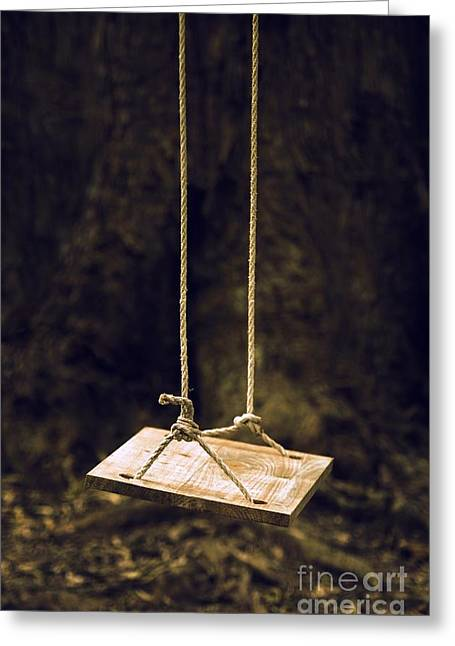 Abduction Greeting Cards - Empty Swing Greeting Card by Carlos Caetano