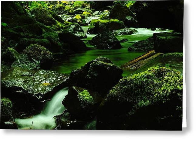 Moss Green Greeting Cards - Emrald pools Greeting Card by Jeff  Swan