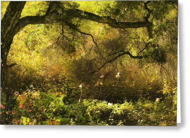 Overgrown Greeting Cards - Enchanted Afternoon Greeting Card by Lynn Andrews