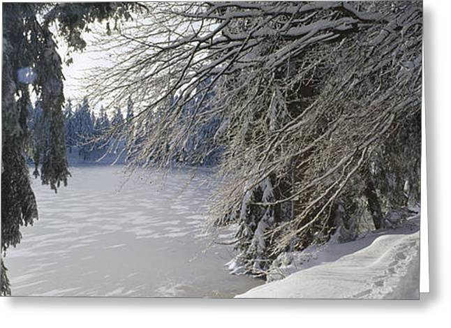 Sun Breakthrough Greeting Cards - Enchanted lake Greeting Card by Holger Spiering