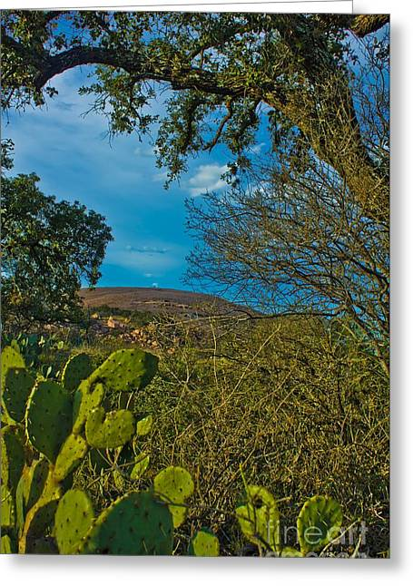 Monolith Greeting Cards - Enchanted Rock Granite Monolith with Cactus Greeting Card by Michael Tidwell