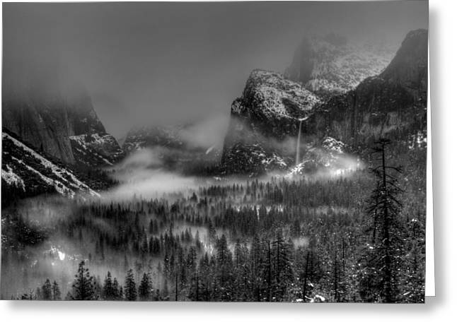 Bridalveil Falls Greeting Cards - Enchanted Valley in Black and White Greeting Card by Bill Gallagher