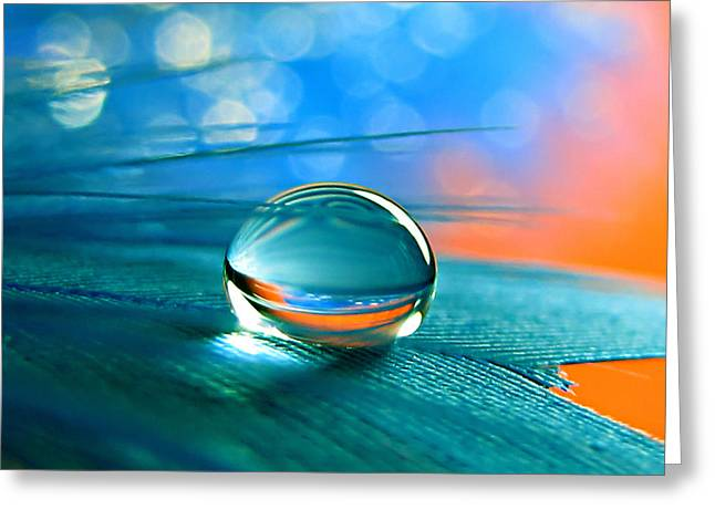 Waterdrops Greeting Cards - Enchanted Greeting Card by Vesna Viden